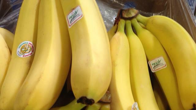 GROW Bananas Builds Communities