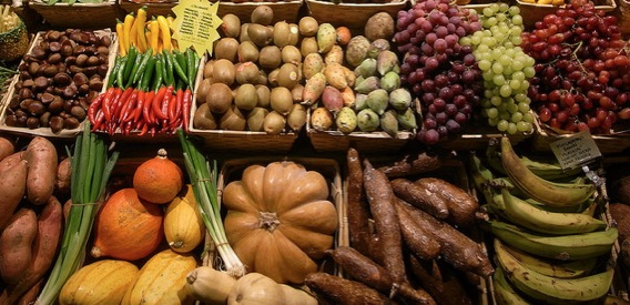 OTA Suggests Strong Rise in Organic Produce Sales