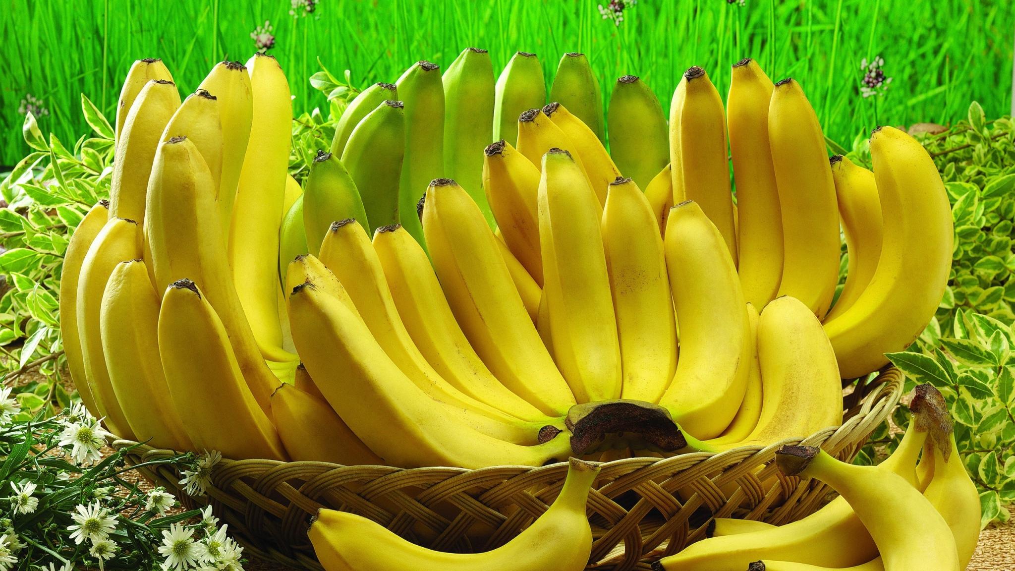 Absolute-Hit-Morning-Banana-Diet