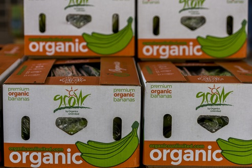 Organics Unlimited Banana Plantation